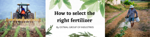 How to select the right fertilizer